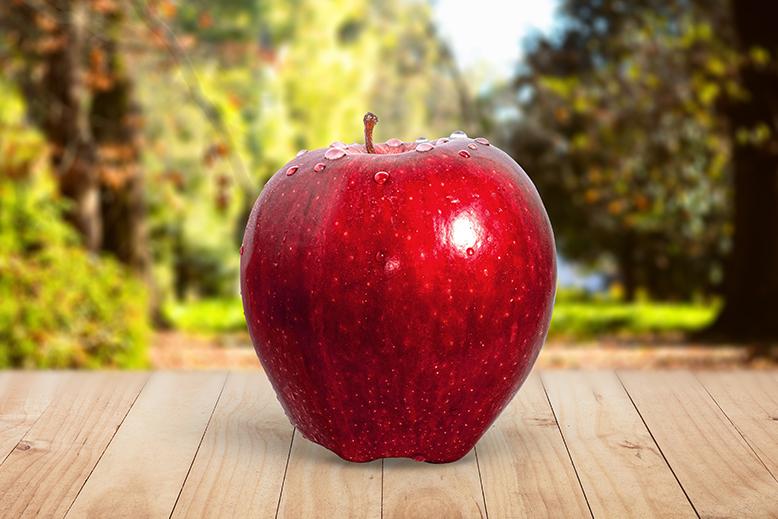 犬がりんごを食べちゃった!身体への悪影響はあるの?