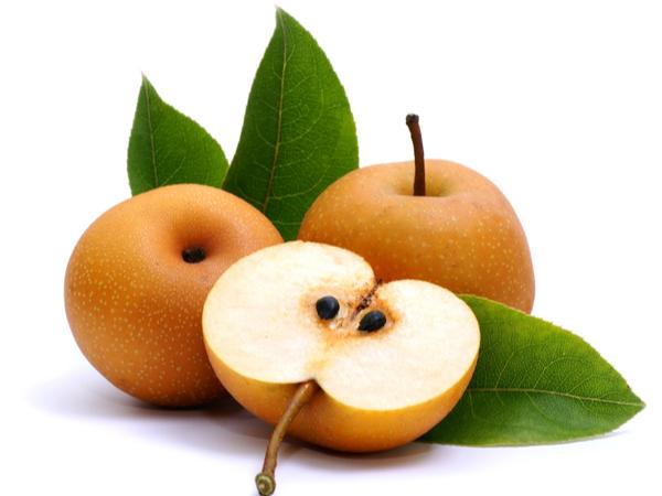 犬も梨を食べられる!美味しく食べるコツ&レシピを紹介