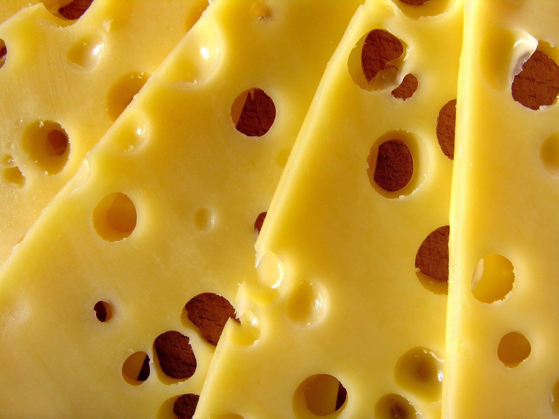 犬はチーズを食べれる?与え方や注意点を紹介