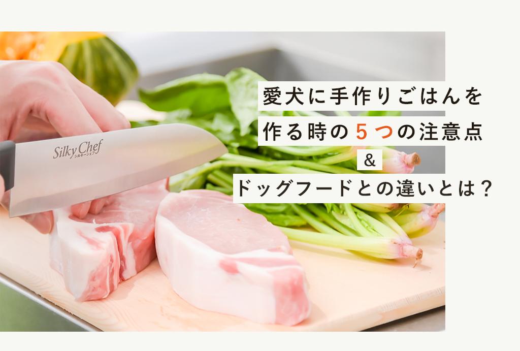 愛犬に手作りご飯を作る時の注意点とドッグフードとの違いとは?